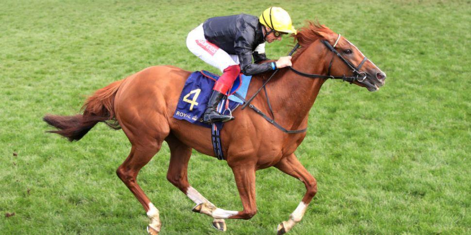 A fantastic Friday of horserac...
