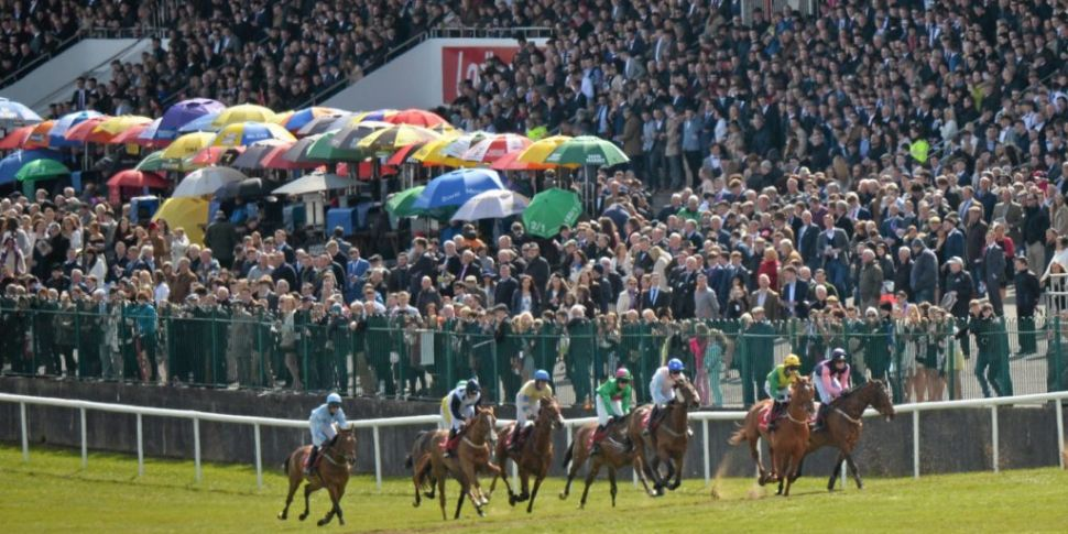 Punchestown and Fairyhouse 202...