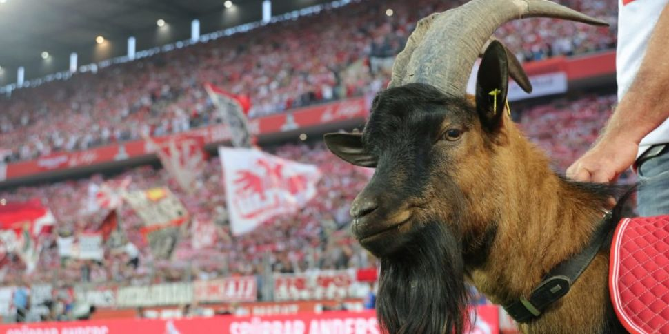 Bundesliga return setback as t...