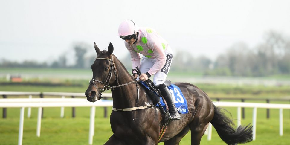 Tiger Roll and Burrows Saint a...