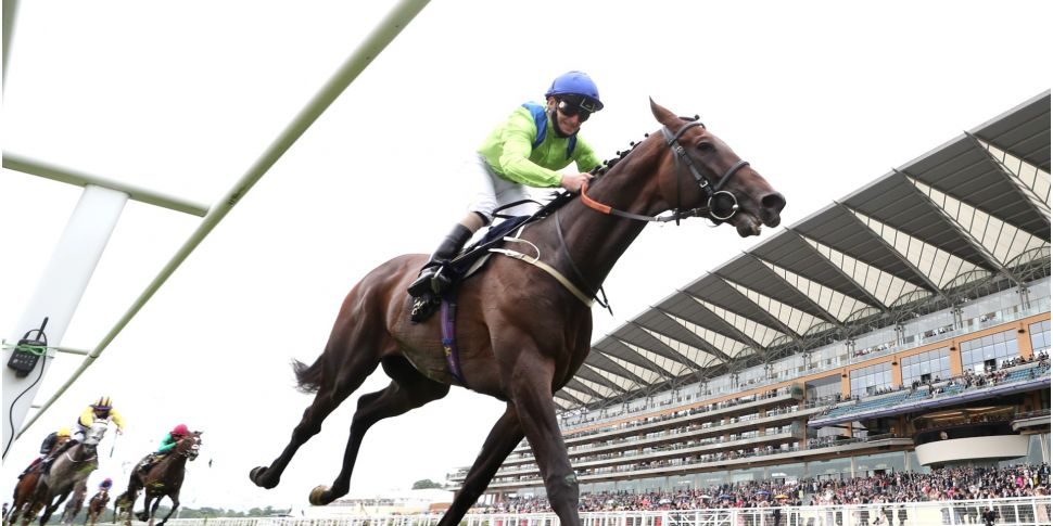 Subjectivist wins Gold Cup at...