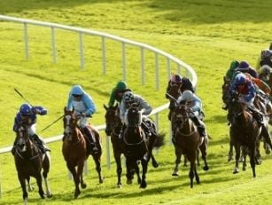 Galway Plate takes centre stag...
