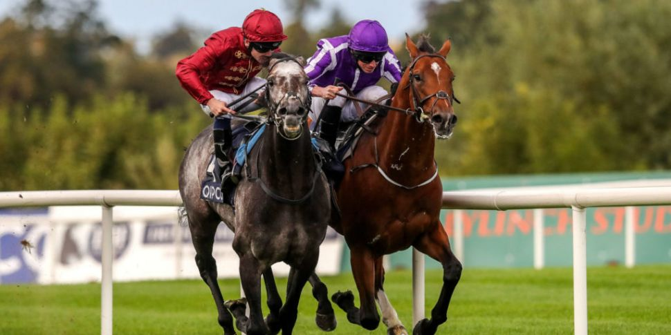 Leopardstown to start Champion...