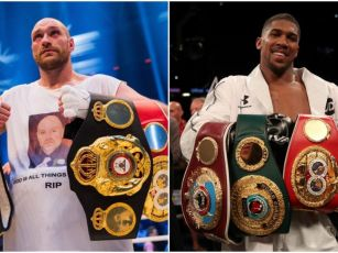 Andy Lee: 'I think Fury would...