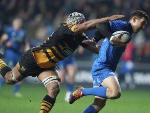 GALLERY: Leinster sting Wasps...
