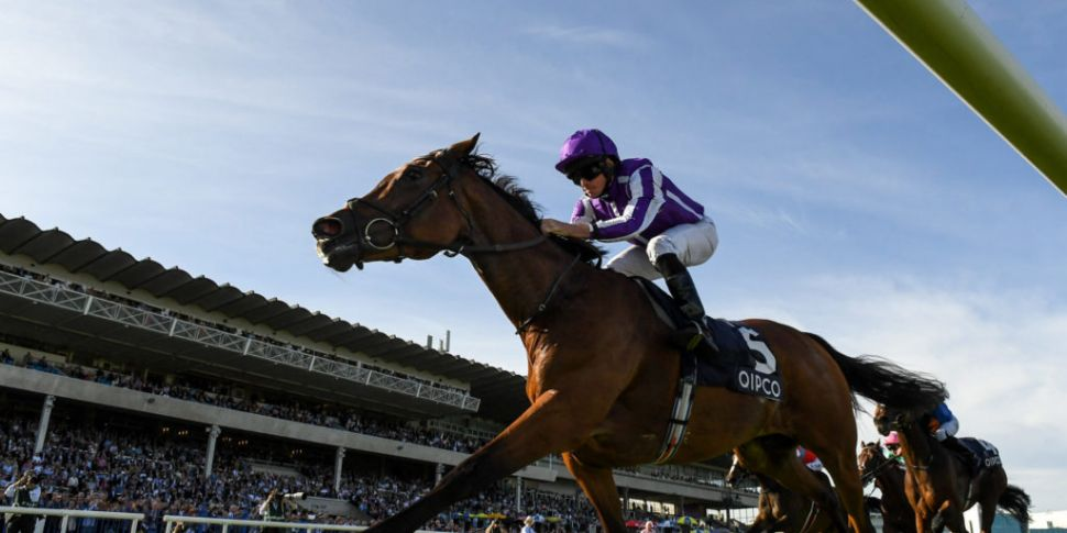 Magical bows out of racing aft...