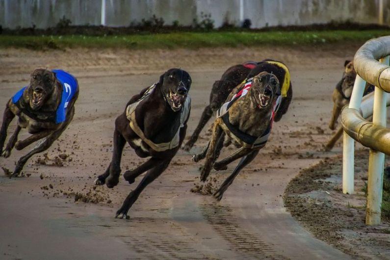 Sponsorship Boost For Kingdom Greyhound Stadium