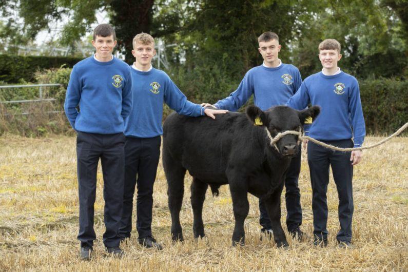 Students from three schools in Shannonside region progress to Certified Irish Angus finals