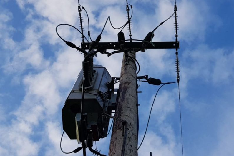 Bird collision likely cause of power outage in Tarmonbarry area
