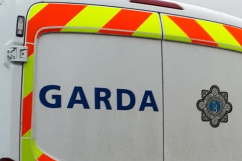 Gardai make arrests following public order incident in Edgeworthstown
