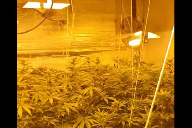 'Sophisticated' cannabis grow house discovered in Leitrim as Garda chief reveals increased drug driver arrests