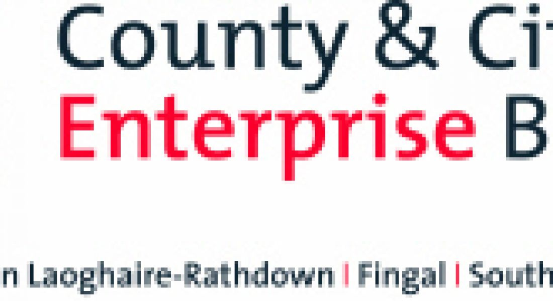 Career Zoo – County and City Enterprise Boards