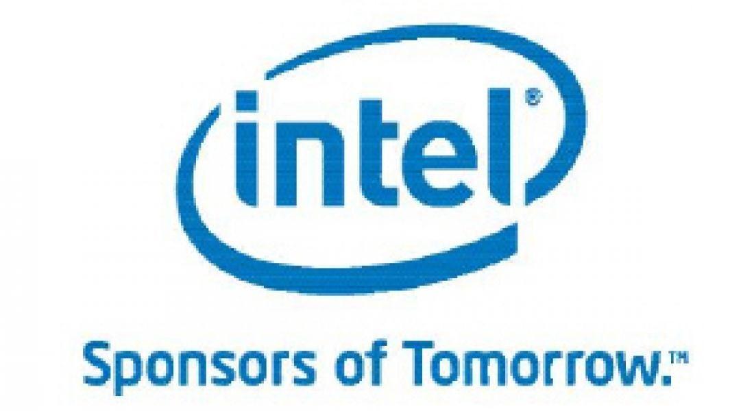Career Zoo – Intel Ireland