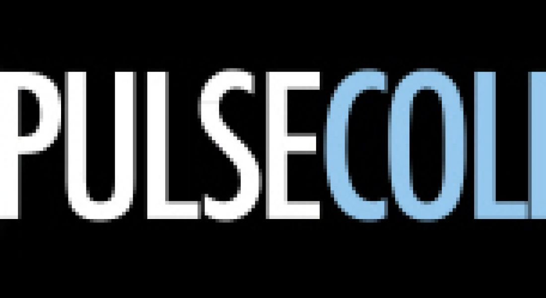 Career Zoo – Pulse College
