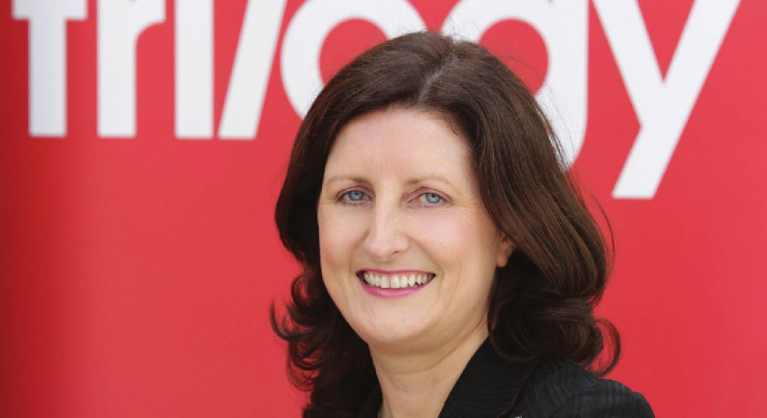 Ireland will need even more skilled immigrants to plug IT skills gap – ISA chair