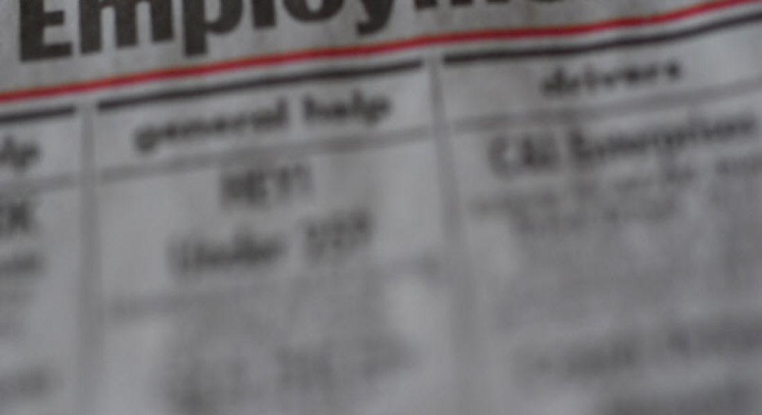 Monthly tracker shows slow progress for Irish jobs market
