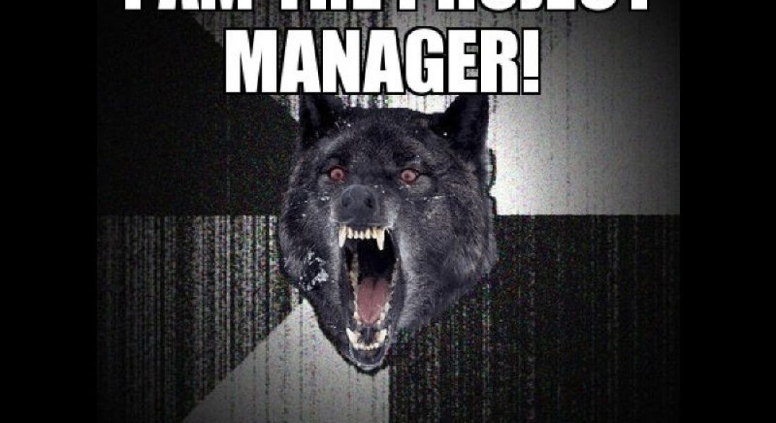 Career memes of the week: project manager