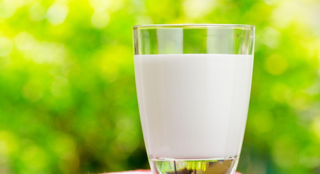 €21m investment in 'milk mining' will create 73 jobs