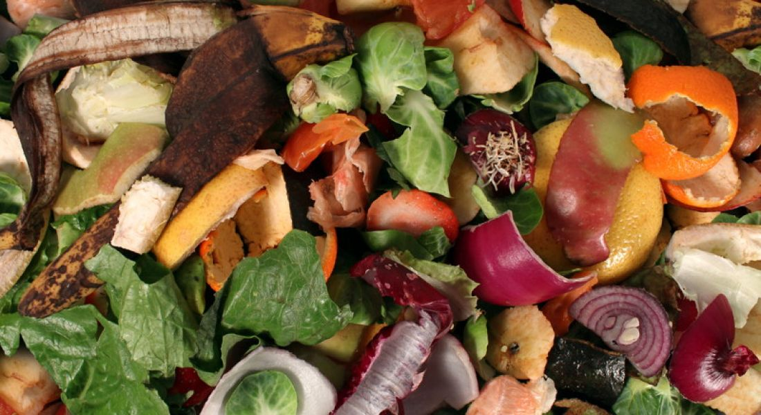 Food waste recycling company to create 45 jobs