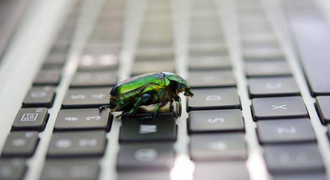 Computer bug QA tester memes