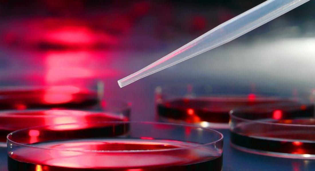 36 new research jobs created via Irish Research Council enterprise programme