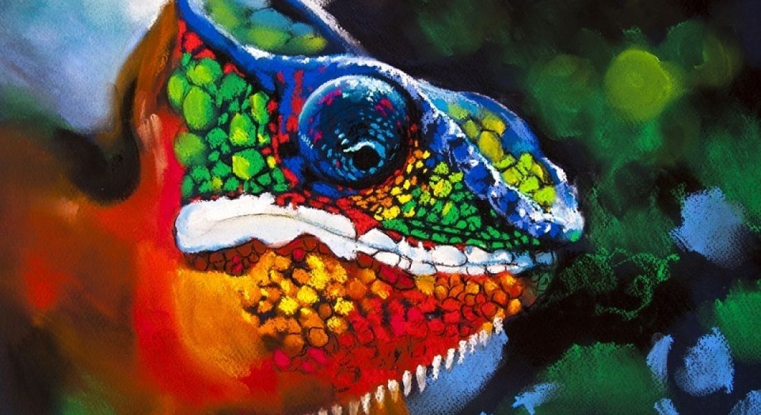 Chameleon Advertising Technologies