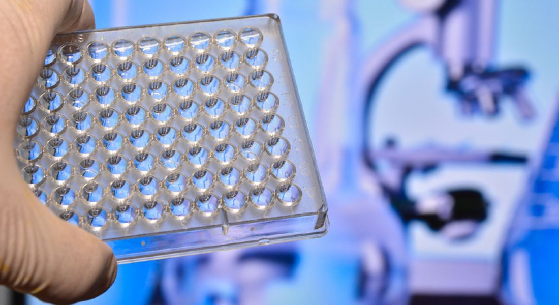 €55m Merck investment brings 70 new jobs to Cork