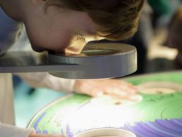 CAO study shows increased interest in STEM at third level