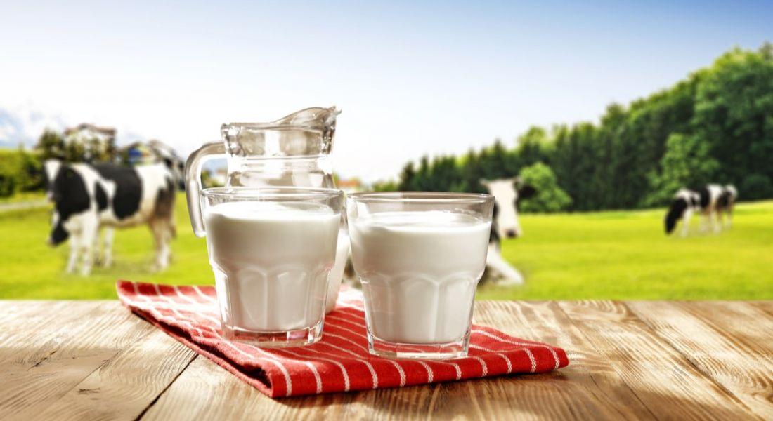 Milk facility jobs