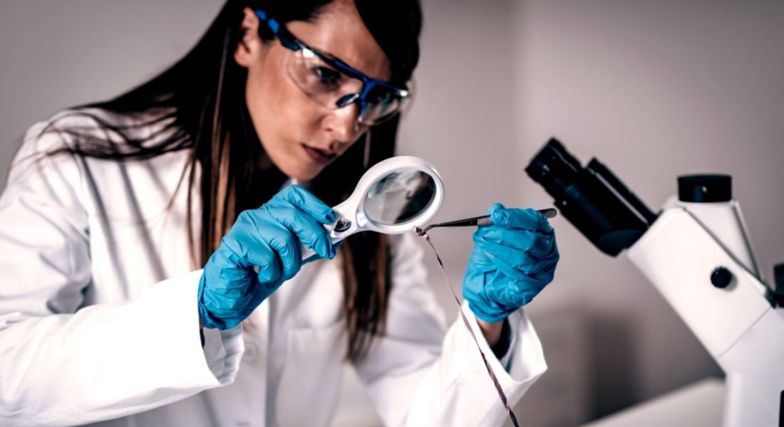 CSI: How to be a forensic scientist in 5 easy(ish) steps
