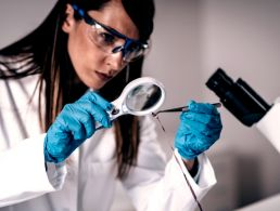 Nanoscience work placement on offer at CRANN