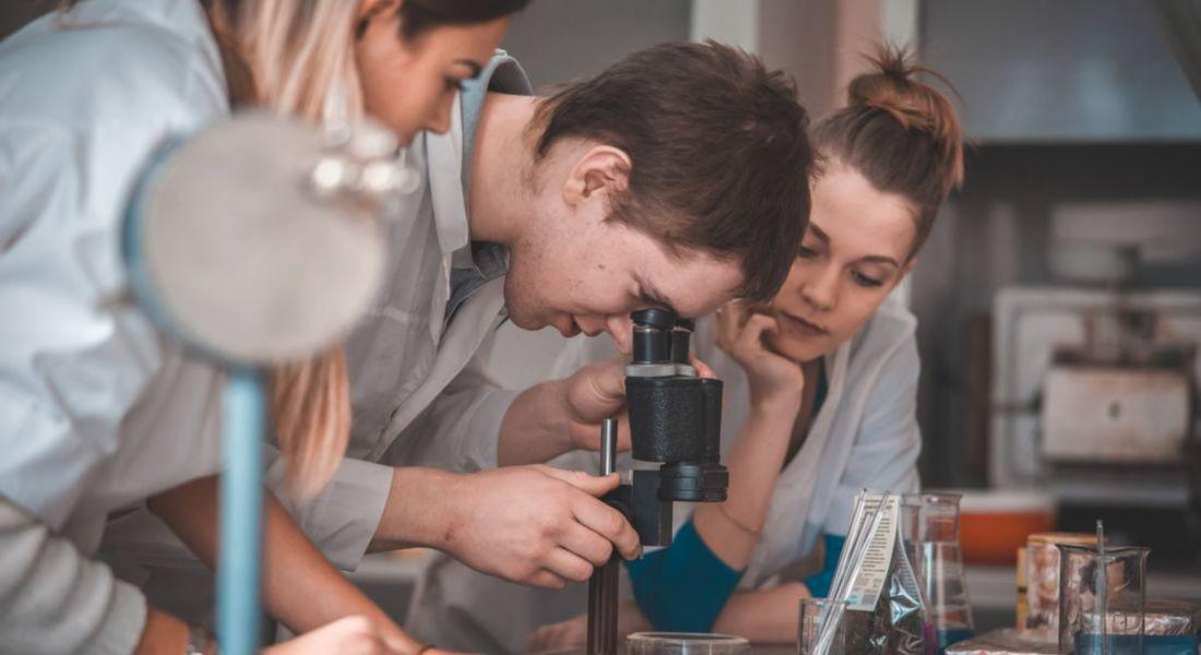 Students who entered STEM career
