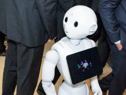 Winners of Cork EMC VEX Robotics finals announced
