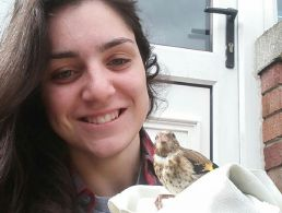 The Friday Interview: John O'Shea, Zamano