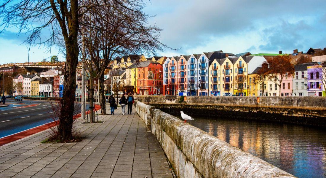 Zevas to create 50 new digital media sales jobs in Cork city