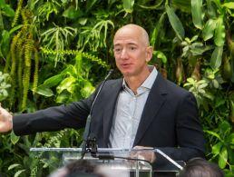 Career Zoo – Amazon