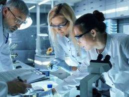 From pharma to Facebook: Job opportunities on the rise