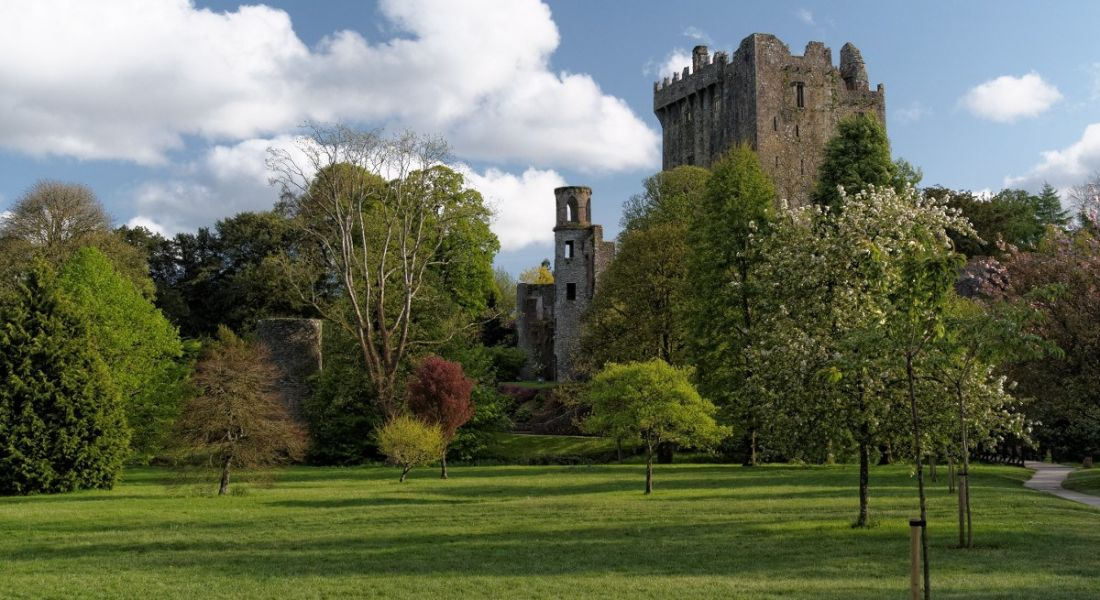 A picture of Blarney castle under a blue cloud sky with beautiful gardens in foreground.
