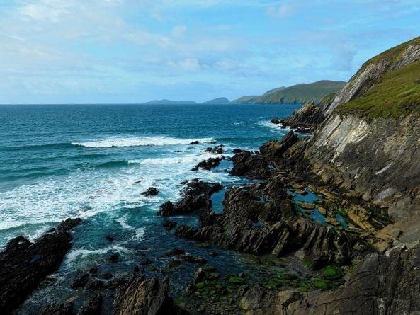 Scientists discover rare sight of huge shark nursery off Irish coast