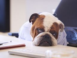 How to get along with the difficult people in your office