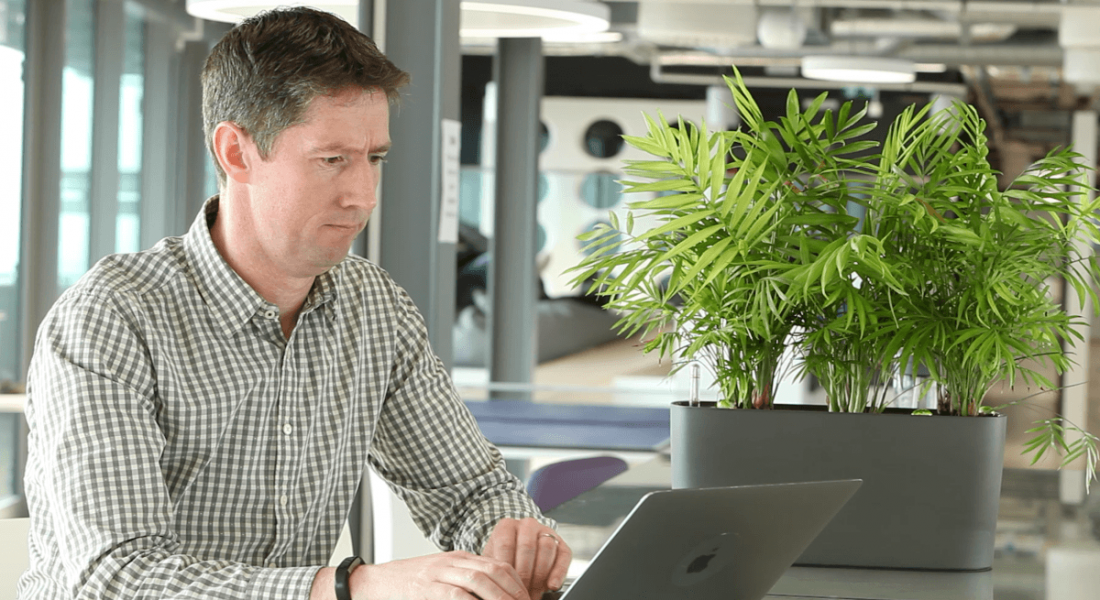 A man working on a laptop in a brightly lit office beside a plant. He works at Verizon Media.