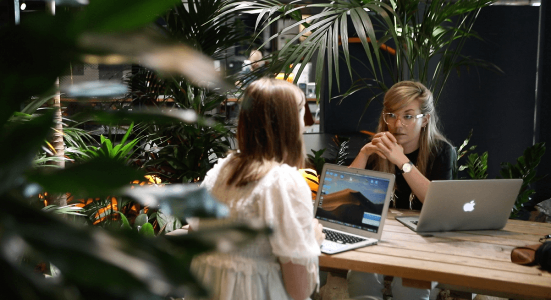 Two women sitting across from each other at a desk in Rothco offices, with a laptop open and plants surrounding them.