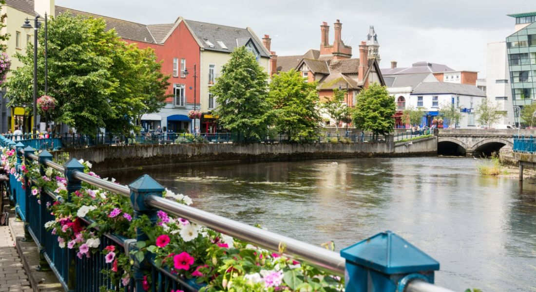 A landscape of a railing with flowers in front of a river in Sligo. There are buildings and a bridge in the background.