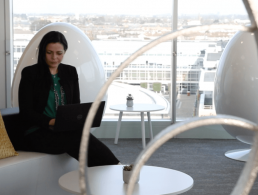 Career Zoo: What skills are employers looking for? (video)