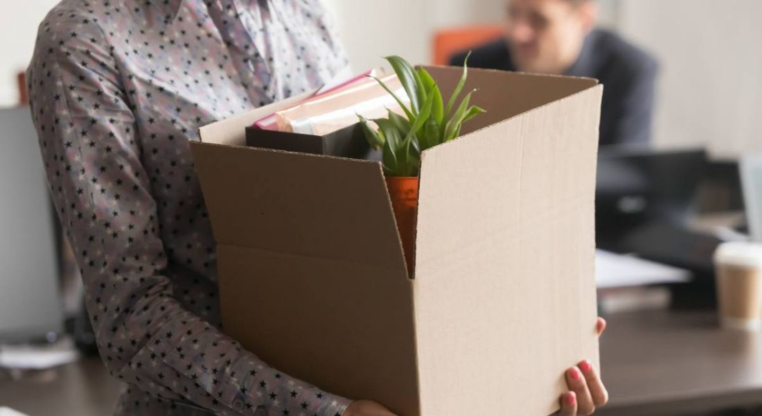 A close-up of someone holding a cardboard box with a plant and other office materials inside representing being let go.
