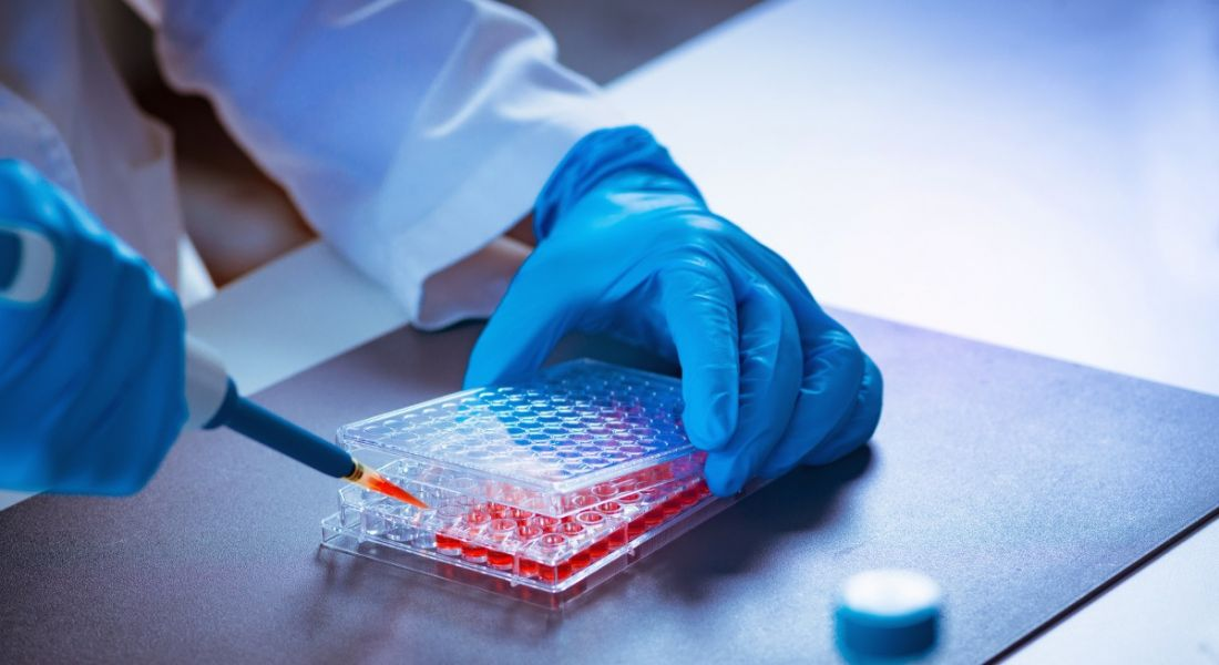 50 new biotech jobs announced for Waterford alongside €1m investment