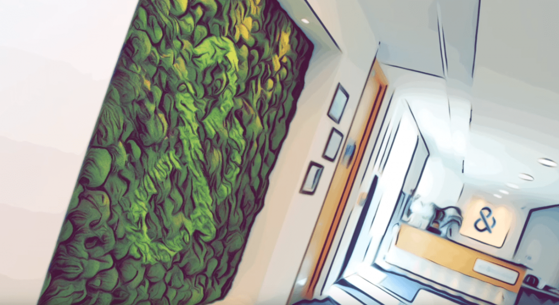Stylistic photo of reception area at Dun & Bradstreet in Dublin, with green wall.