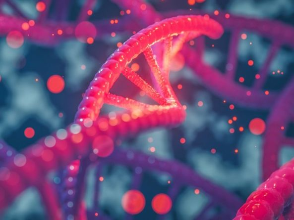 What is ECRISPR? Scientists herald discovery of new use for gene-editing tool