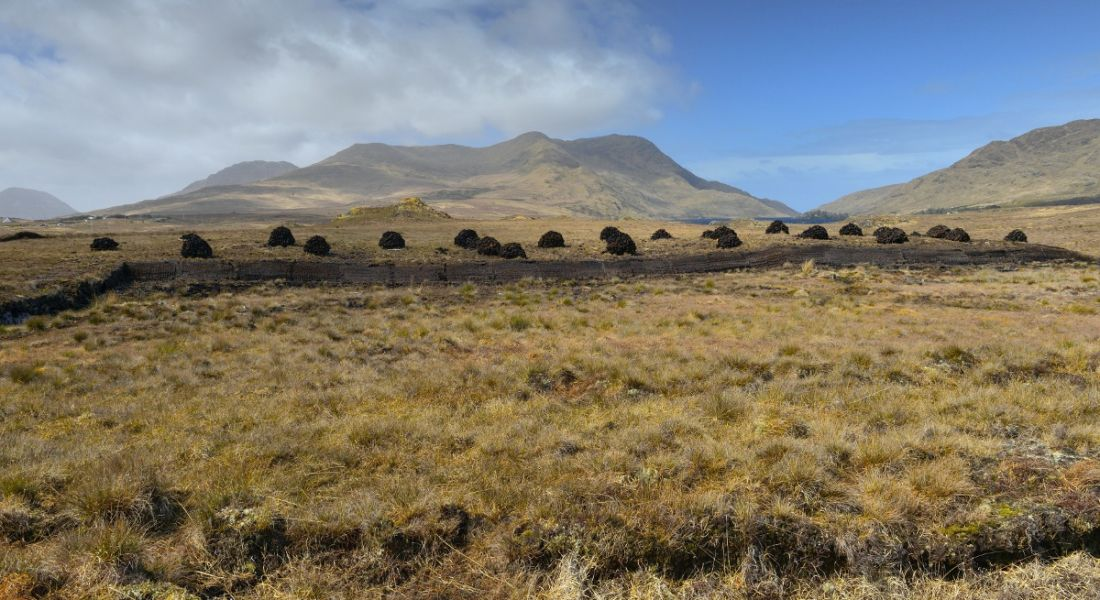 Landscape of bogland in Ireland, with piles of turf drying under the sun.