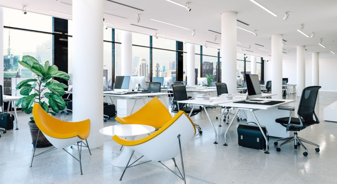 Modern office interior with natural light, plants and yellow chairs.